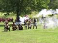 Colonial troops